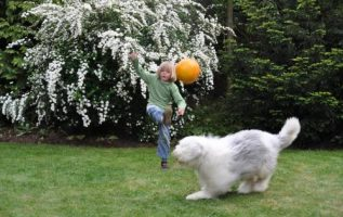 Pampered Pets Inc | Pet Grooming | 10075 | New York | 3